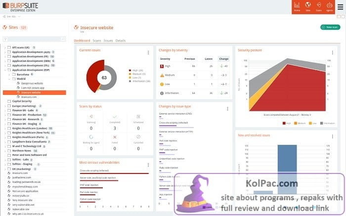 Burp Suite Professional Download